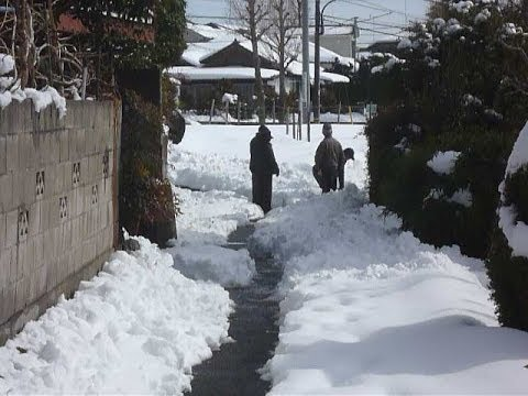 Heavy snowfall in Tokyo