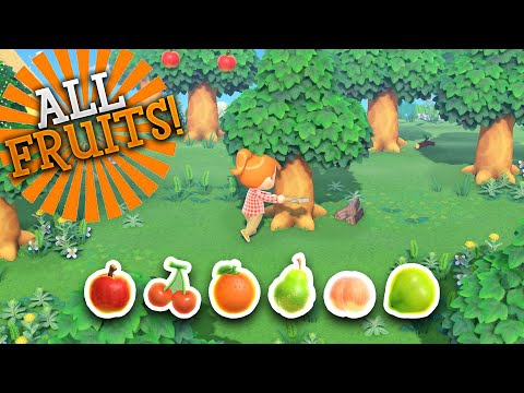 How to get Every Fruit in Animal Crossing: New Horizons!