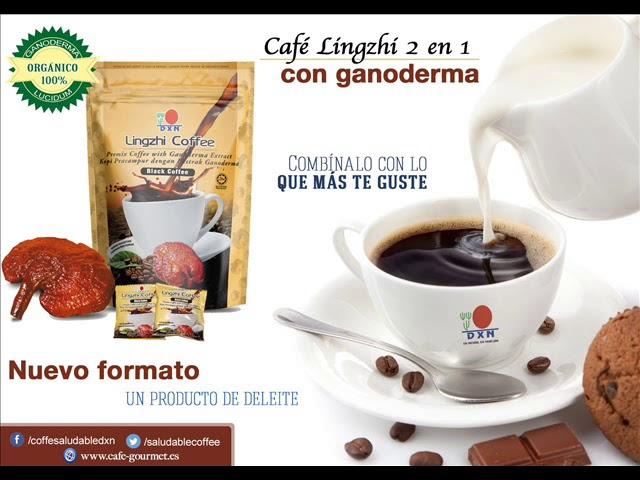 Cafe ganolife sirve para adelgazar