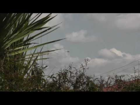 RESCUE HELICOPTERS HAMILTON
