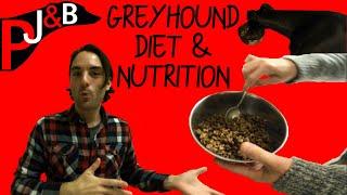 Paul & his Greyhound: Greyhound Diet & Nutrition