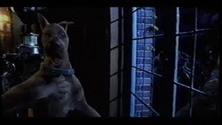 Scooby Doo (2002) Trailer (VHS Capture)