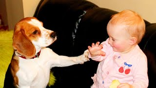 Dog and baby hugs and kisses for Good Morning