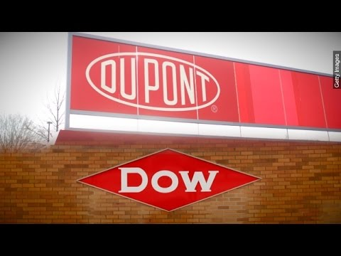 DuPont, Dow Chemical Announce $130 Billion Merger - Newsy