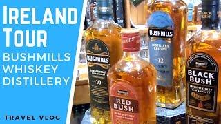GIANTS CAUSEWAY : IRELAND RV TOUR : Old Bushmills Whiskey Distillery, Dunluce Castle & Portrush