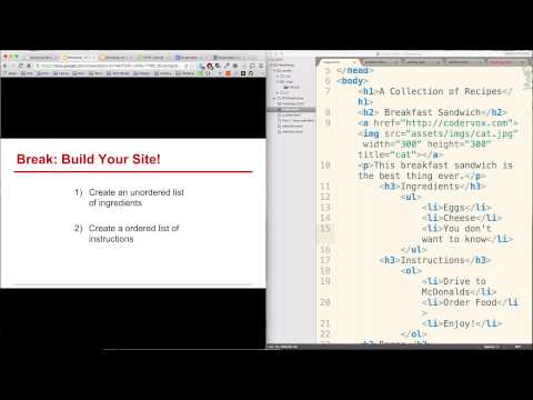 Web Development for Newbies: HTML & Web