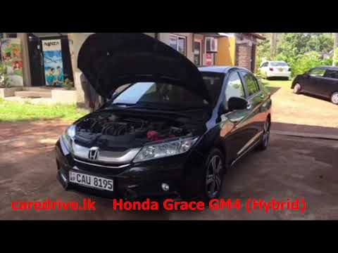 Honda Grace Hybrid VIN / Chassis & Engine Number Location