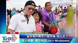 颱風天放飛 翅膀不敵強風鸚鵡溺斃