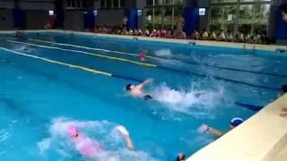 105年八斗國小游泳比賽(自由式接力)