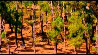 Meethi Meethi Sardi Hai [Full Song] Saajan Mera Us Paar Hai