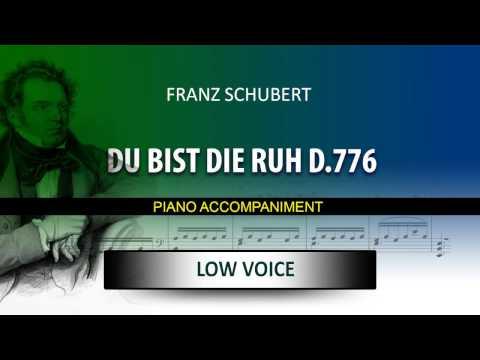 DU BIST DIE RUH, D776 / Karaoke piano / FRANZ SCHUBERT / Low Voice