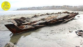 When A Cyclone Pummeled The Coast Of Maine, It Unearthed An Enormous 160 Year Old Relic