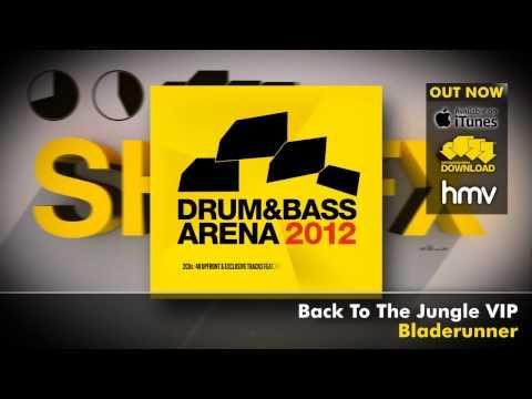 Drum&BassArena 2012 (Album Megamix)