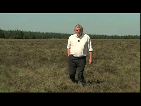 Forestry Commission Film