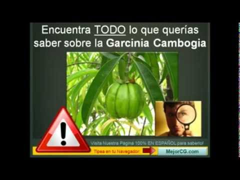 Does garcinia cambogia work alone