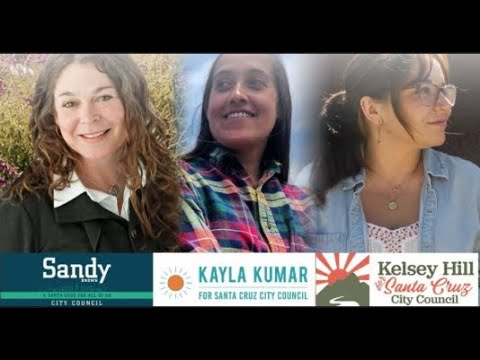 Media Watch interviews four progressive candidates to City Council