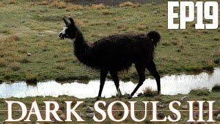 Video de LLAMA NEGRA | Dark Souls 3 Reborn (Ep 19)
