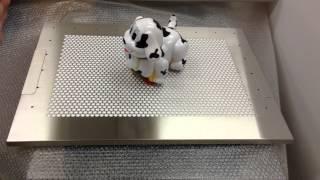 詳しくは犬用ステンレス製トイレトレイの専門サイトで! http://www.tar...