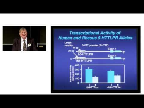 Biokonferansen 2011 - Stephen Suomi - Epigenetic consequenses..