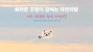 화려한 조명이 감싸는 자전차왕(feat.신난다) | 신…