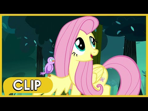 Fluttershy Gets Separated / Chrysalis' Minions Split Up - MLP: Friendship Is Magic [Season 8]