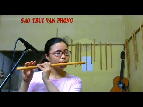 Take Me To Your Heart | Bamboo Flute Cover | Vi Vu