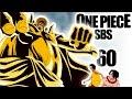 One Piece Info - Sbs Tomo 60 | La Zoan MitolÓgica De Sengoku | CumpleaÑos De Supernovas video