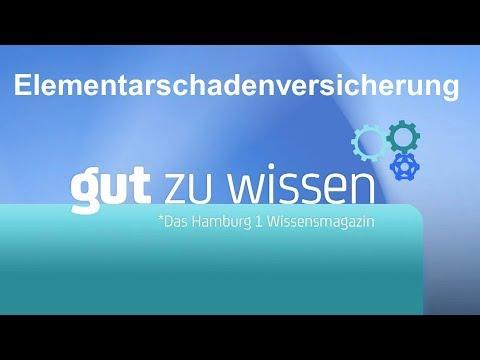 Erklärvideo Elementarschadenversicherung / Hamburg 1-Wissenssendung