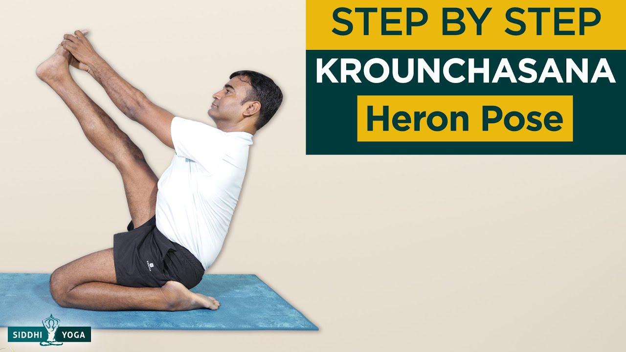 Krounchasana Heron Pose Benefits Contraindications How To Do By Yogi Ritesh Siddhi Yoga Youtube