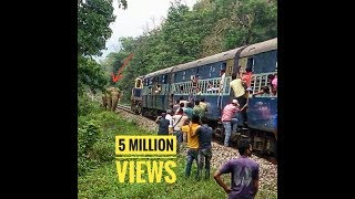 Huge Elephant chasing train and train moving ba...