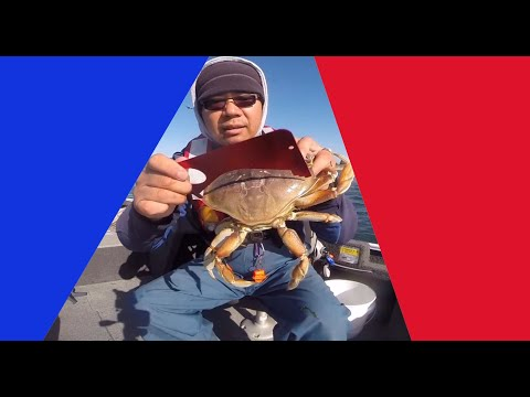 Oregon Crabbing - Catching Crabs In Coos Bay