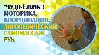 Развитие мелкой моторики.  Самомассаж рук с помощью массажного мяча и мелкая моторика