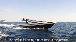 Anvera 55, perfect combination of size and performance