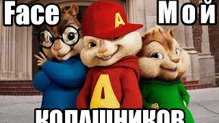 Элвин и Бурундуки Мой Колашников (Face)
