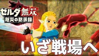 【ゼルダ無双】この強さ美しい!ゼルダ姫守られなくても絶対強い説w PART2