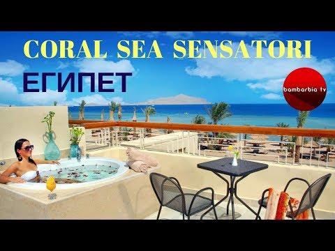 ЕГИПЕТ. CORAL SEA SENSATORI (Шарм-эль-Шейх) - обзор отеля и отзывы