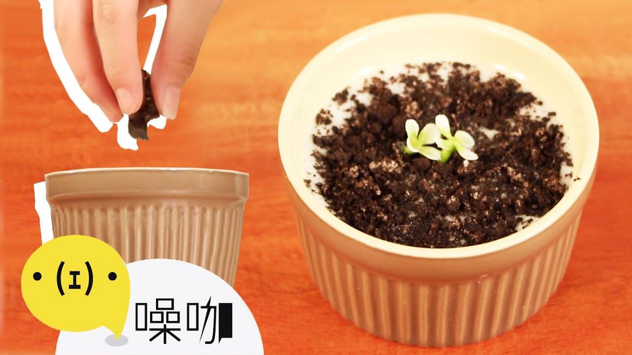 全球都在瘋的盆栽甜點 【做吧!噪咖】 - YouTube