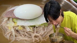 SUB)먹방 VLOG 평양냉면 첫 경험,,,(Feat.밥잘사주는멋진오빠)_Cold Noodles, Bulgogi, Dumplings Mukbang