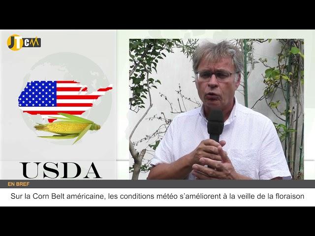Le rapport USDA crée la surprise générale