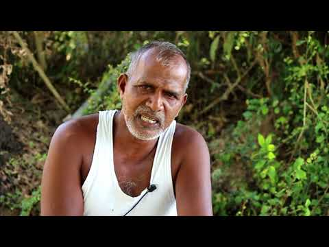 """""""Organic Farming Story