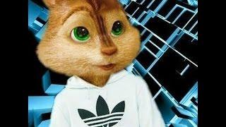 кавказские бурундуки)))Caucasian Chipmunks))) Роберт Каракотов