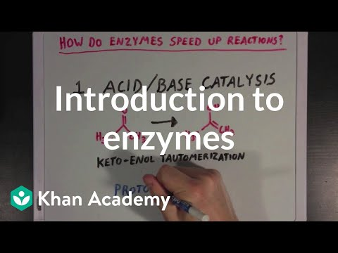 Introduction to enzymes and catalysis | Chemical Processes | MCAT | Khan Academy