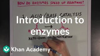 Video Introduction to enzymes and catalysis | Chemical Processes | MCAT | Khan Academy download MP3, 3GP, MP4, WEBM, AVI, FLV Agustus 2018