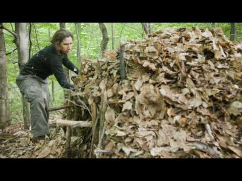 Roots School-Primtive Skills, Survival, Tracking