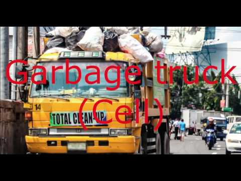 Waste collection management system