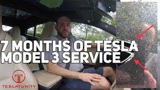 7 Months of Tesla Model 3 Service