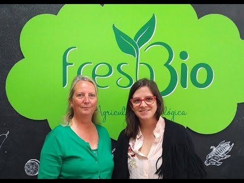 Like a phoenix rising out of the ashes –organic food by freshbio / Holistic Creators