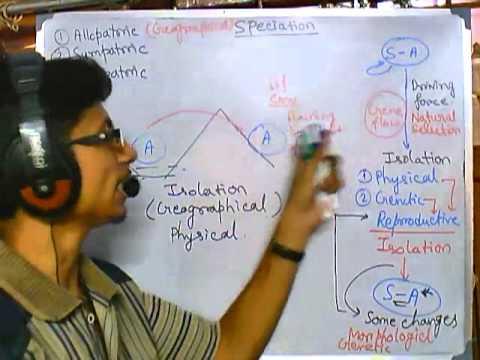 Origin of species: Allopatric speciation (evolution part 6 speciation 2)