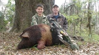 Free Range Wild Boar Bow hunt in Florida for HOGS! hunting with Dogs awesome shot by youth