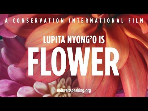 Nature Is Speaking: Lupita Nyong'o adalah Bunga   Conservation International (CI)